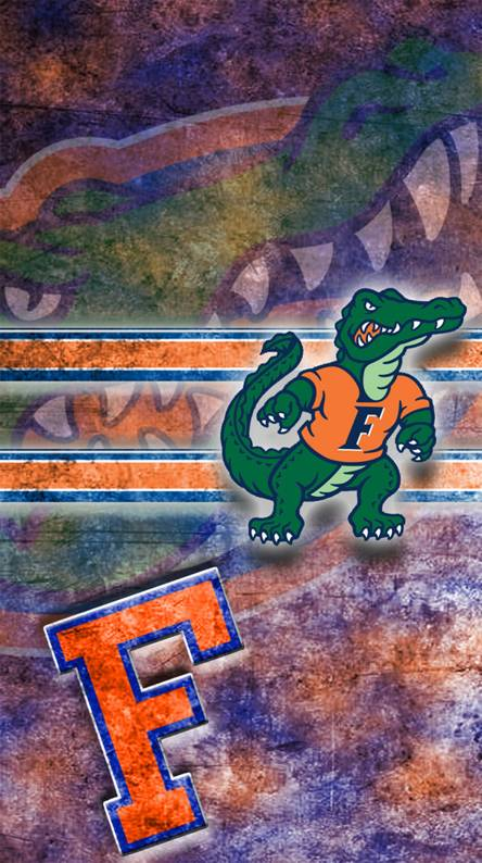 Gator Wallpapers - Free by ZEDGE™