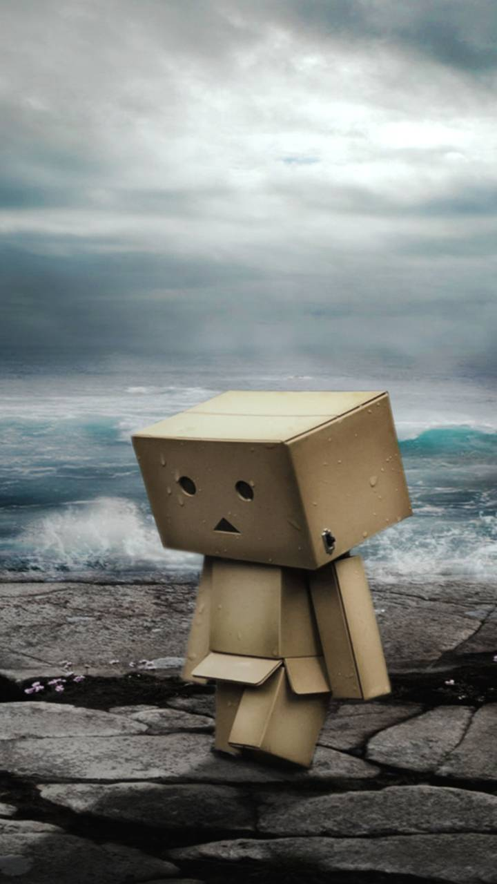 Danbo On Ocean Coast
