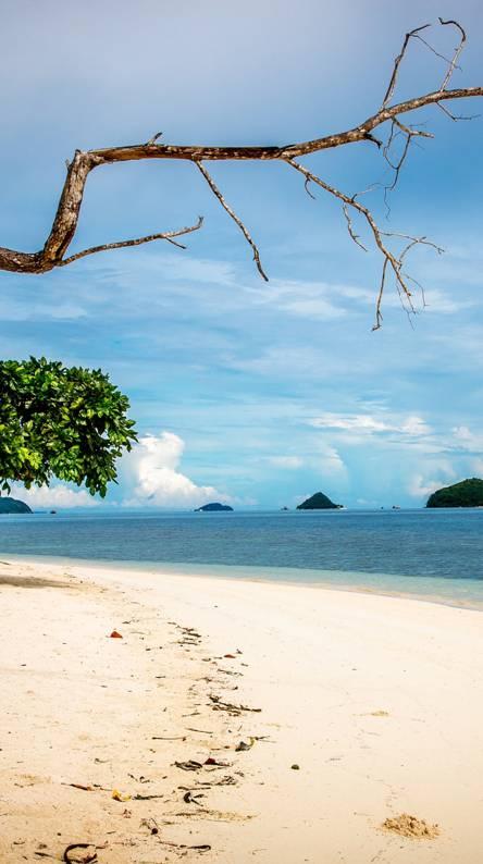 Island Beach