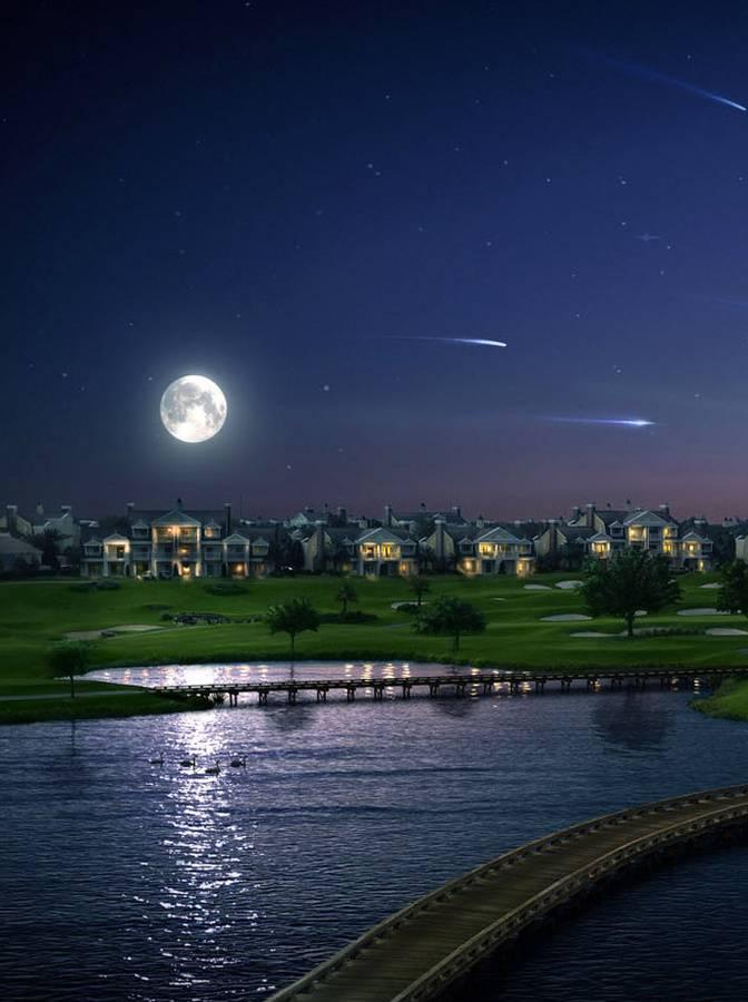 gleam of moonlight