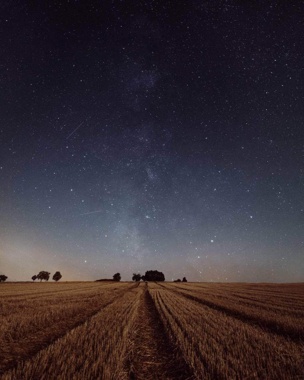 Galaxy fields
