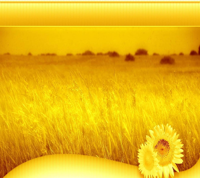 Yellow Nature