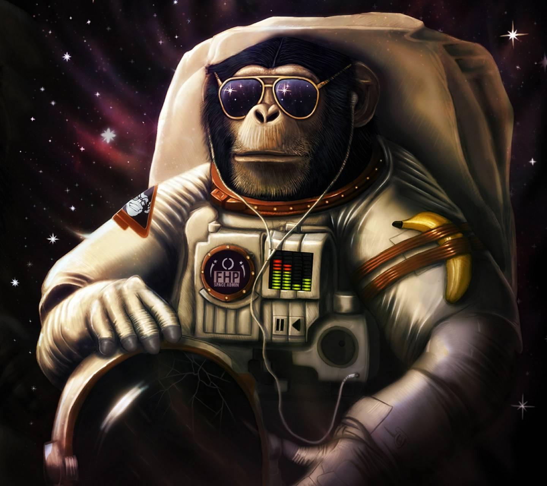 Space Gorilla Wallpaper by vdelsalto28 - 93 - Free on ZEDGE™