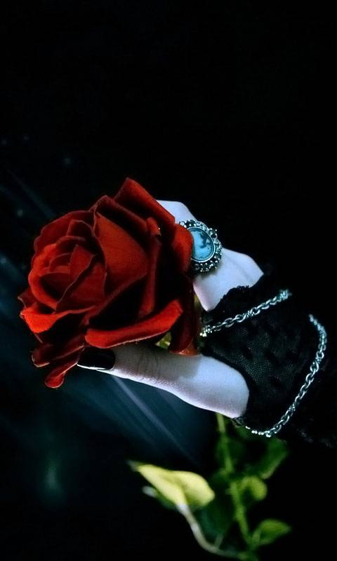 Rose In Hand Gothic