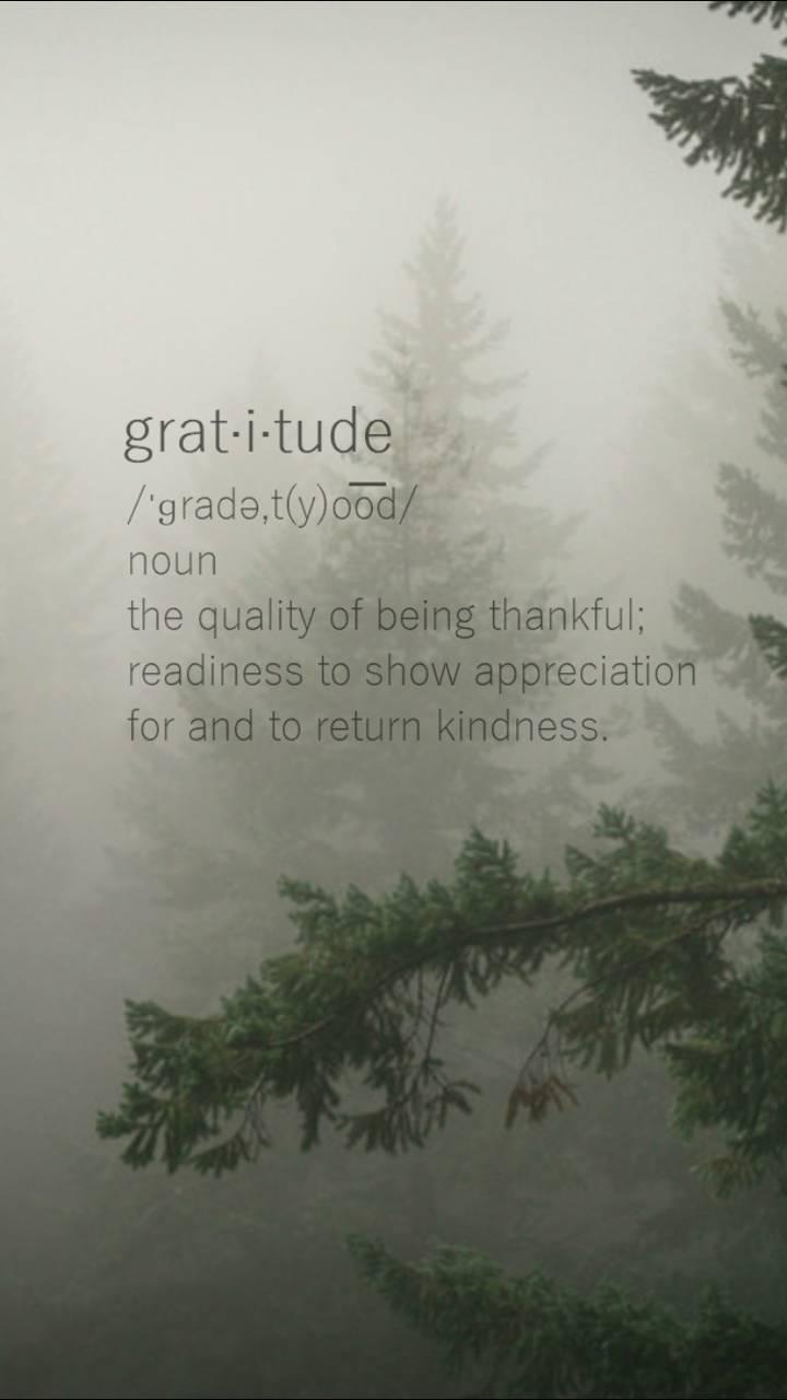 Gratitude Wallpaper By Cozypac B8 Free On Zedge