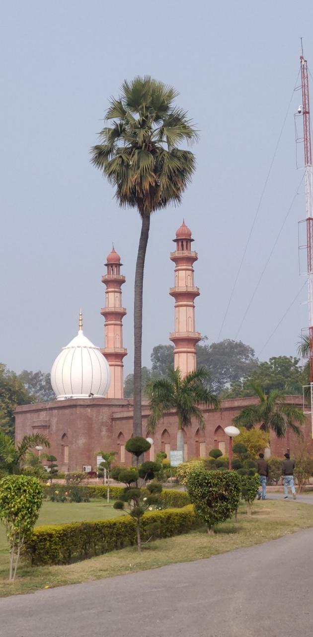 Sir Syed house