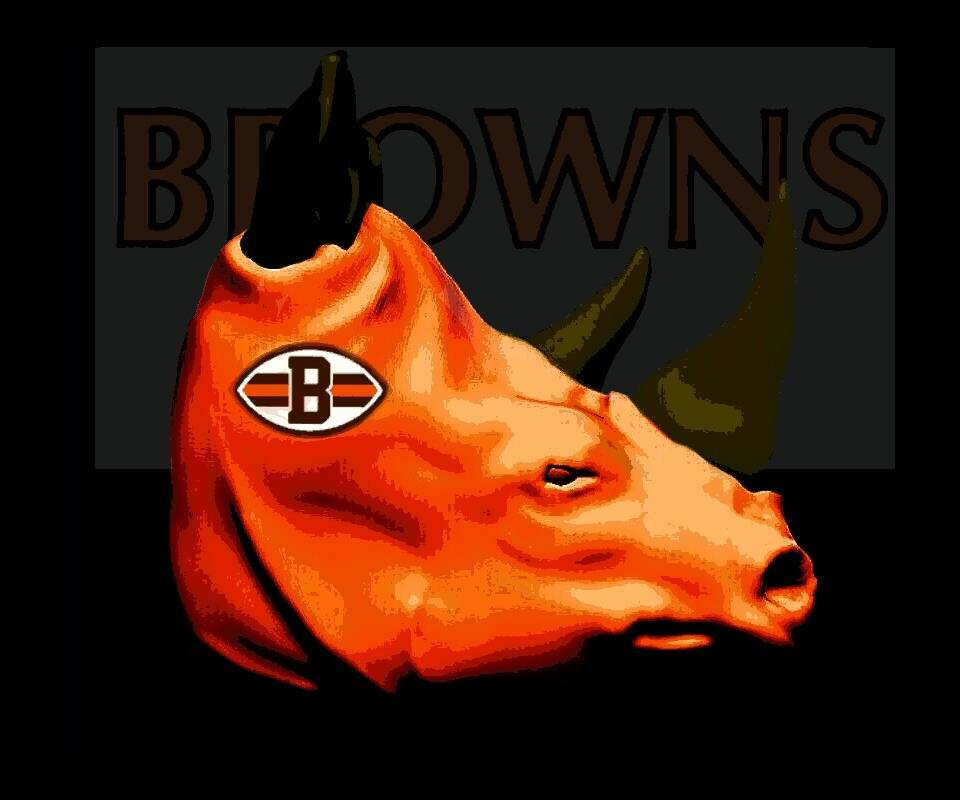 Browns Plow 2