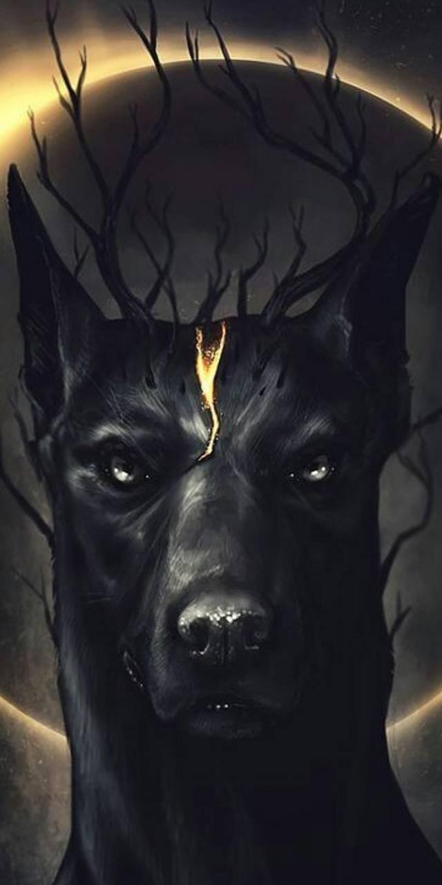 perro oscuro