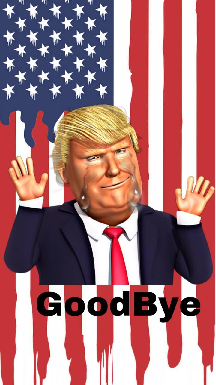 Goodbye Donald