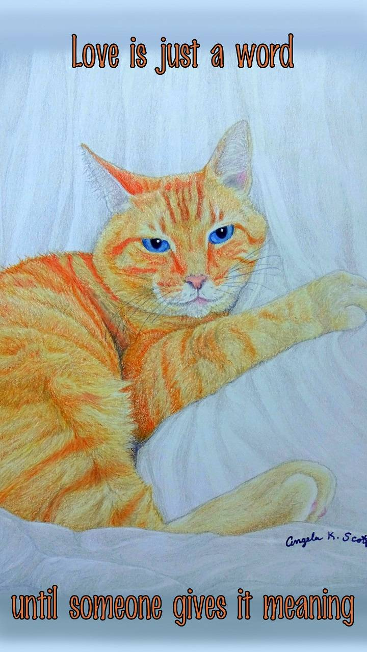 Love Meaning Cat art