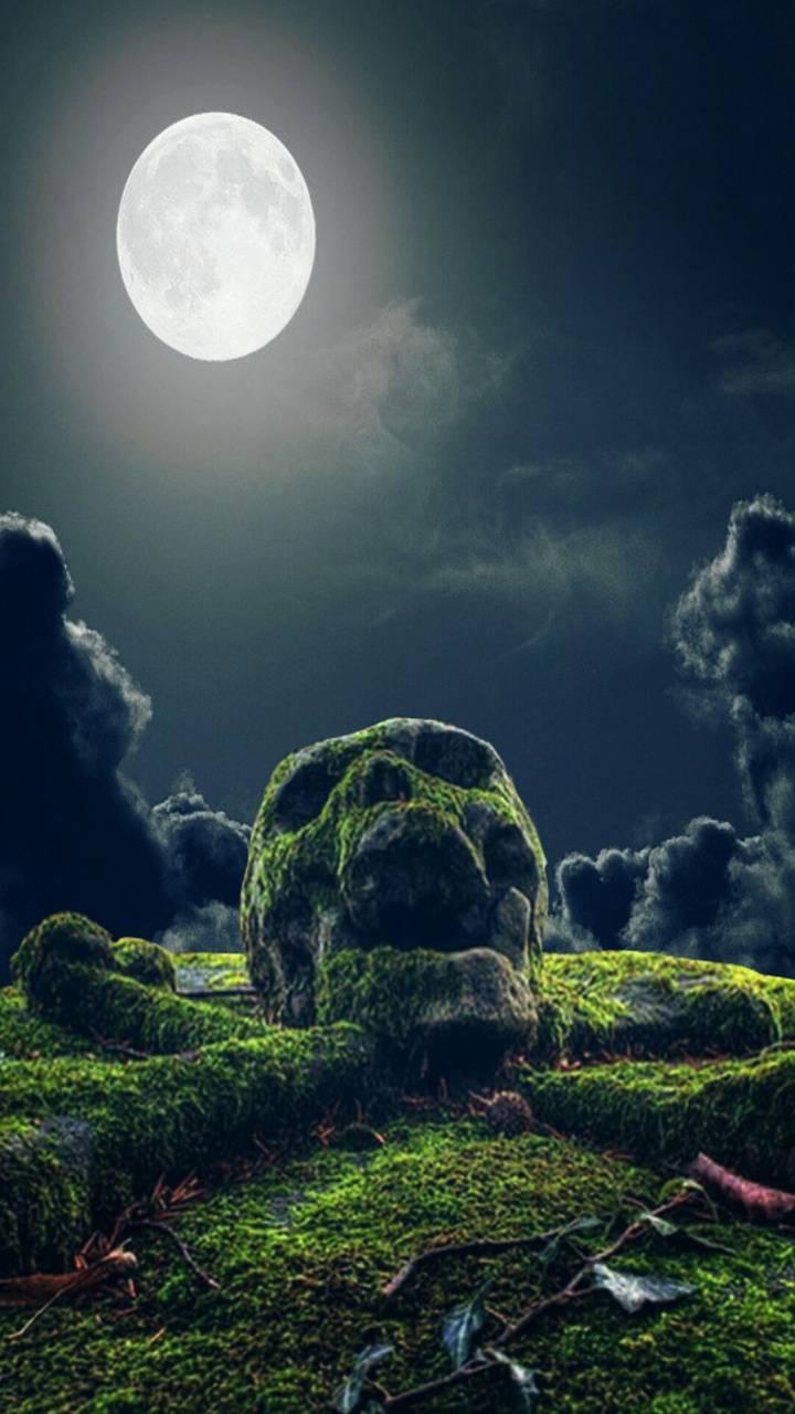 Skull rock night