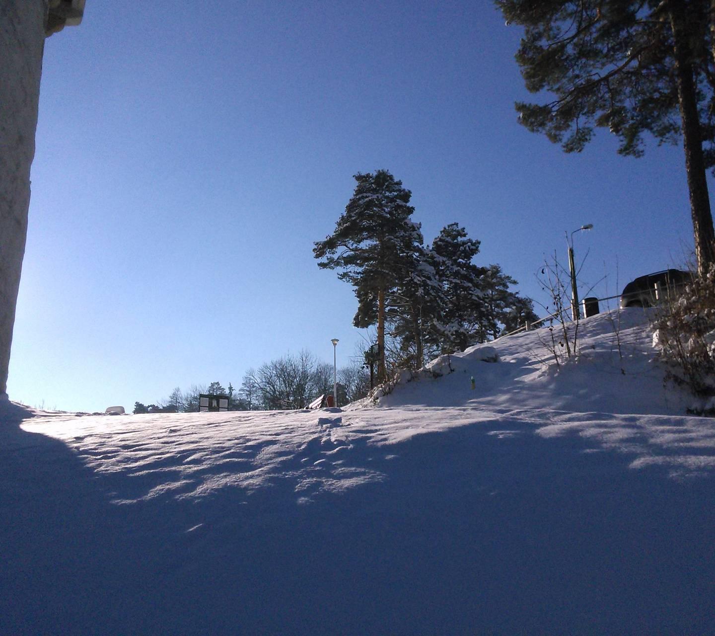brasov white tower