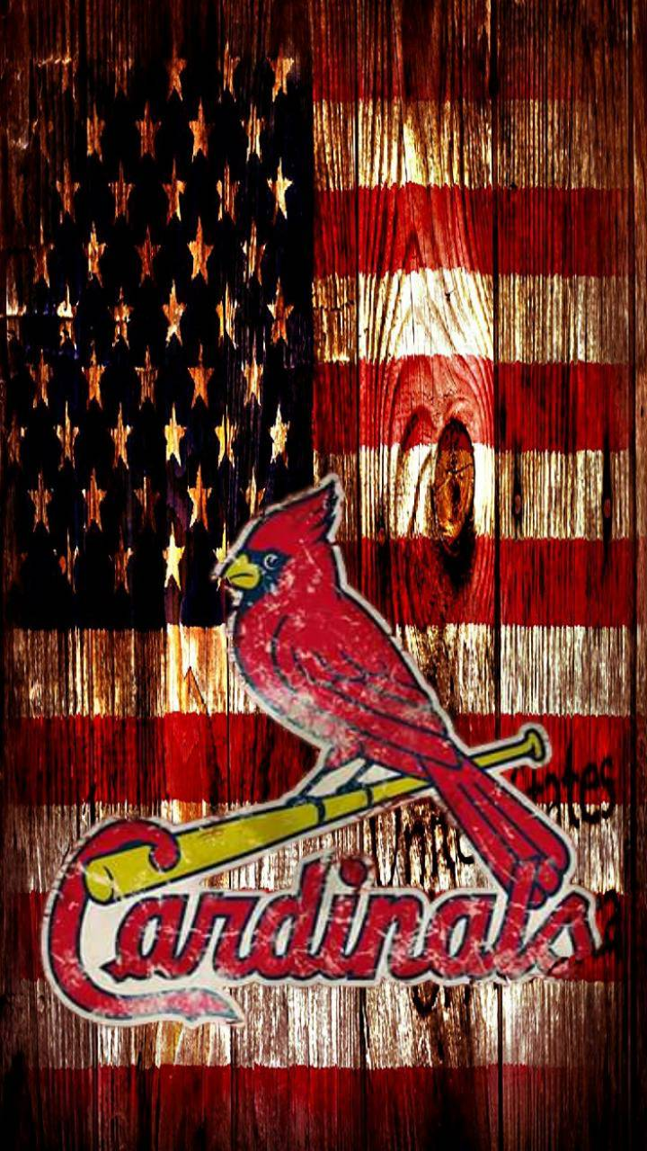 Cardinal nation 2