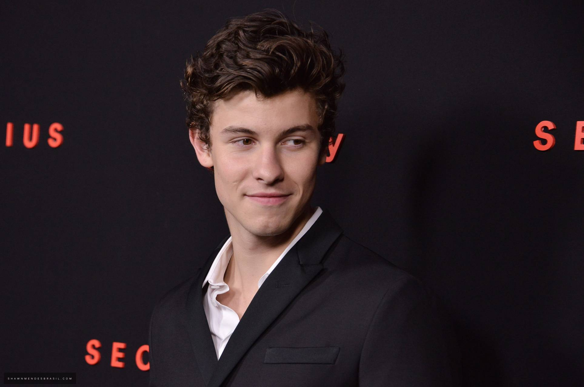 shawn mendes 17