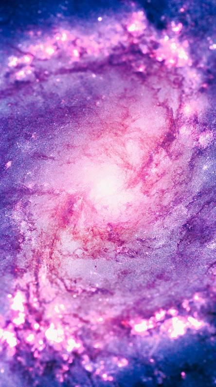 Cosmic Vaccum