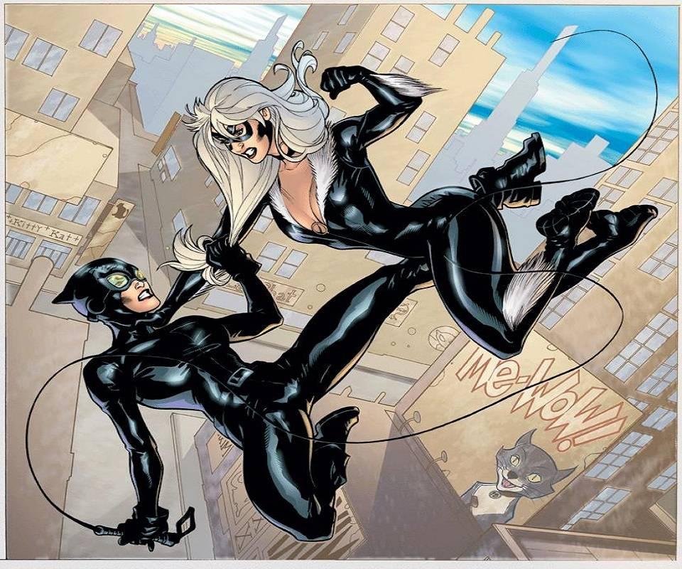 Catwoman V Black Cat