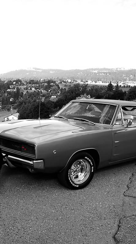1968 Dodge Charger Rt Wallpapers Free By Zedge