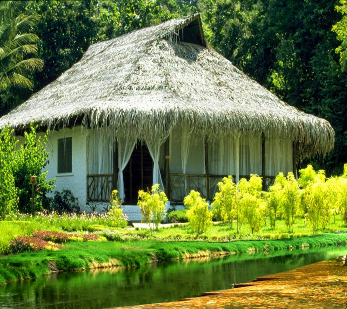 House nd nature