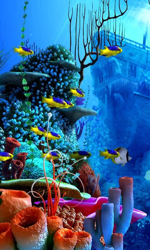 Декабря день, картинки анимации морские обитатели