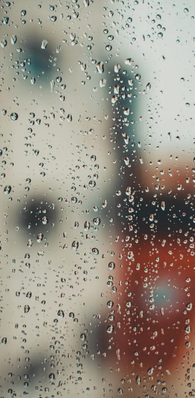 Rainy 🌧🌧