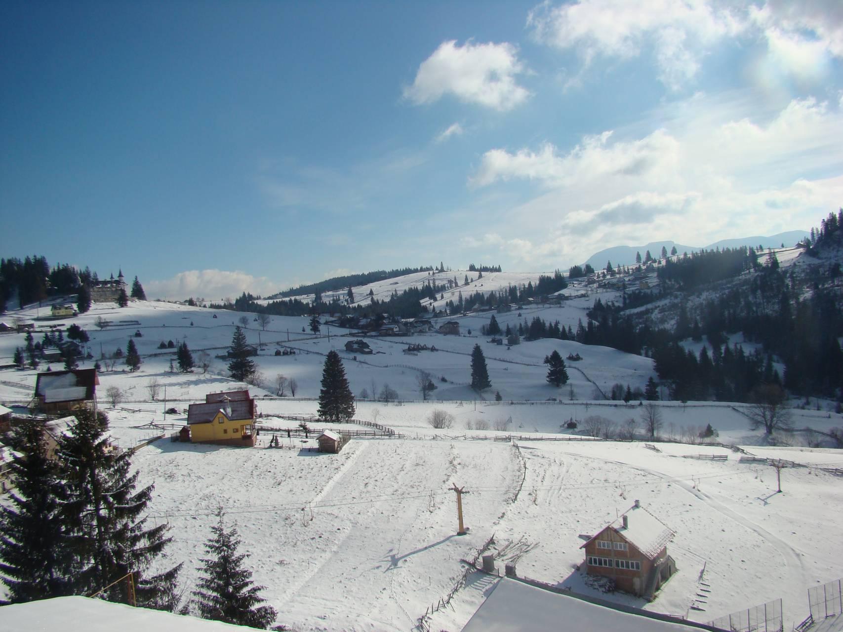 iarnainromania