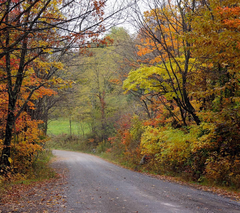 Nelson County USA