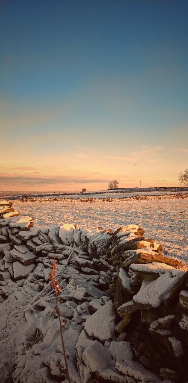 Winters dusk moors