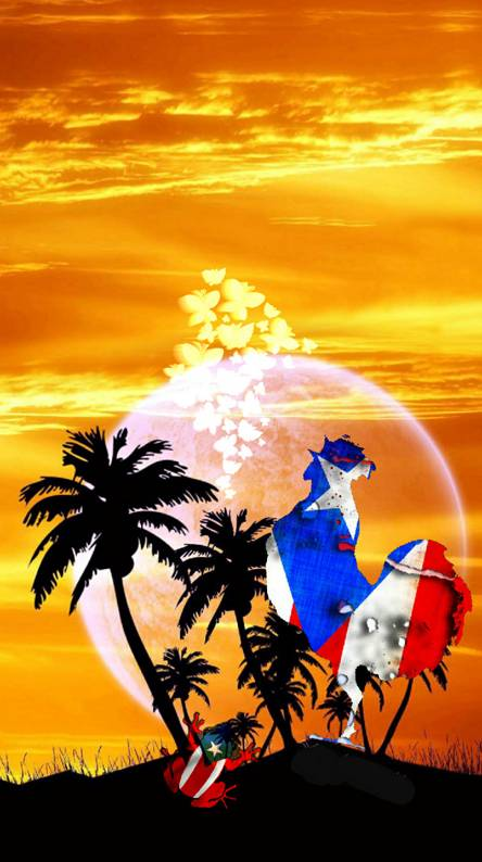 Puerto Rico Wallpapers Free By Zedge