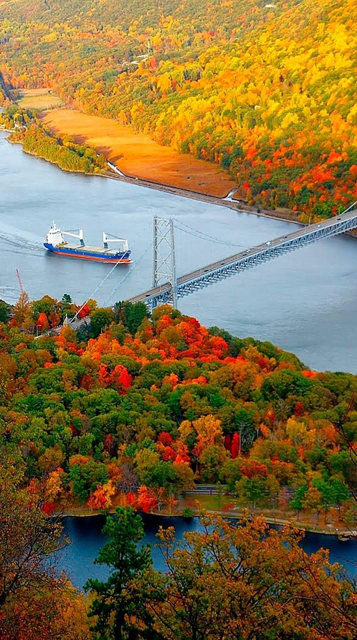 barge autumn 1