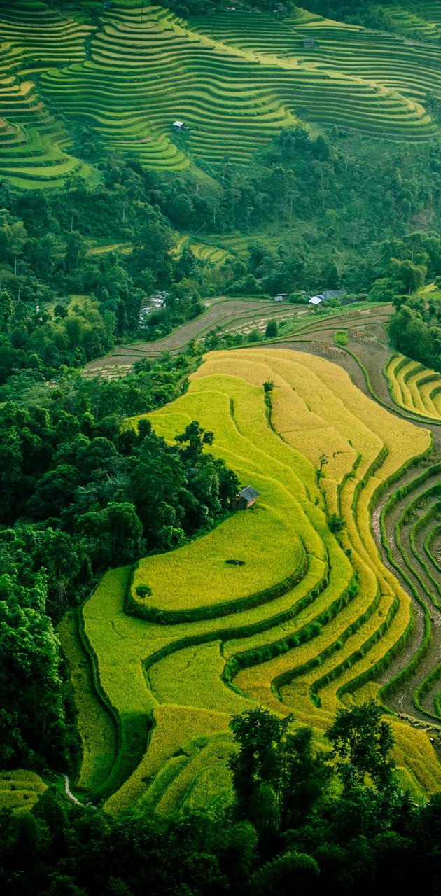 Ha Giang - Viet Nam