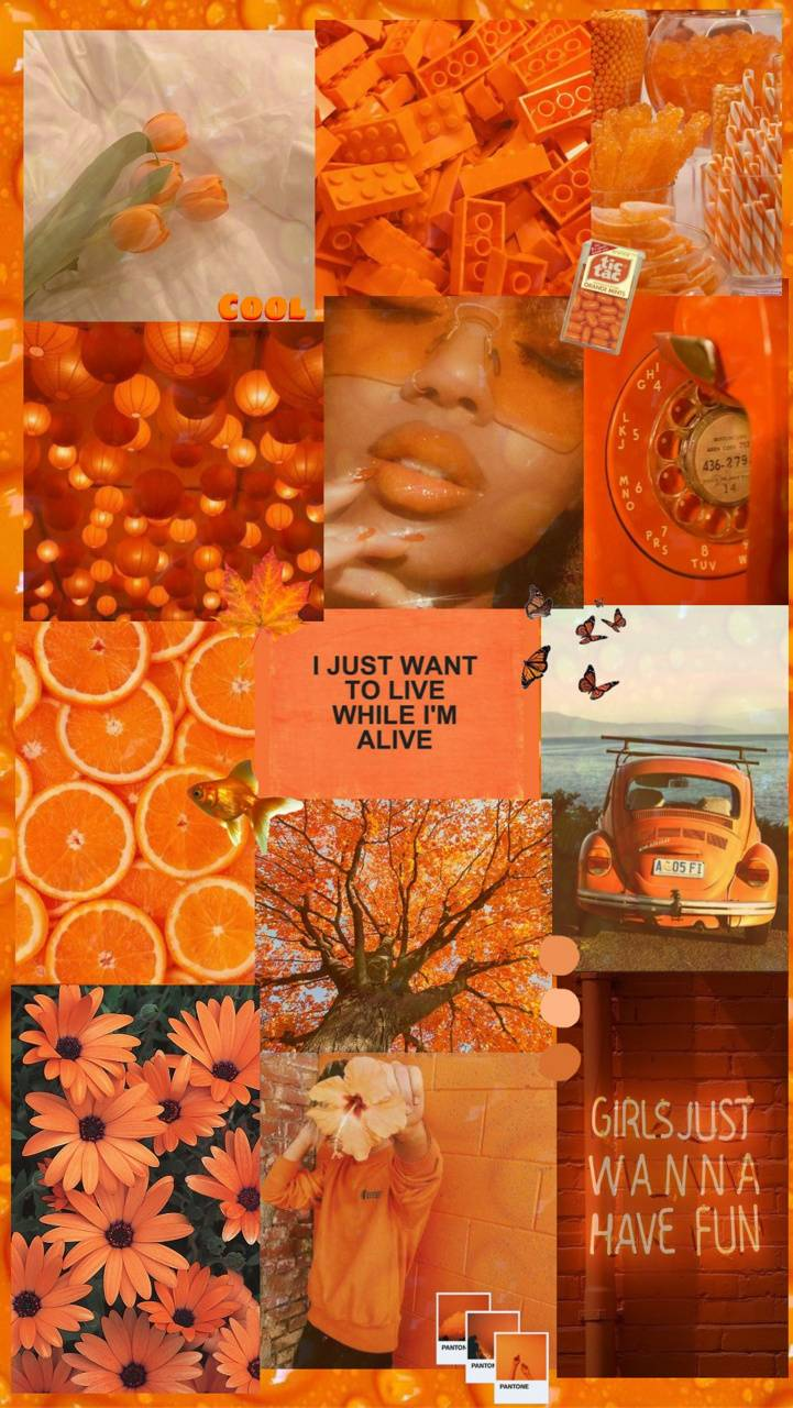 Aesthetic orange wallpaper by the_aesthetic_wall - ab ...