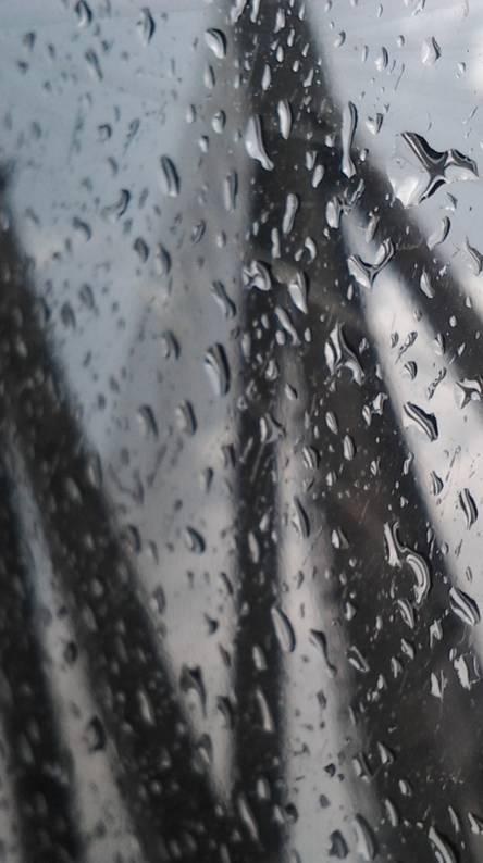 Rainy M