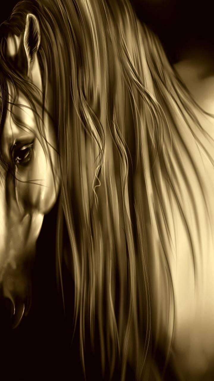 Amber Horse