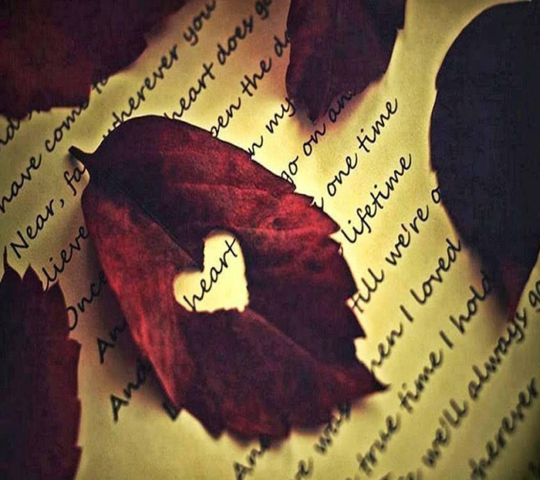 leaves loving