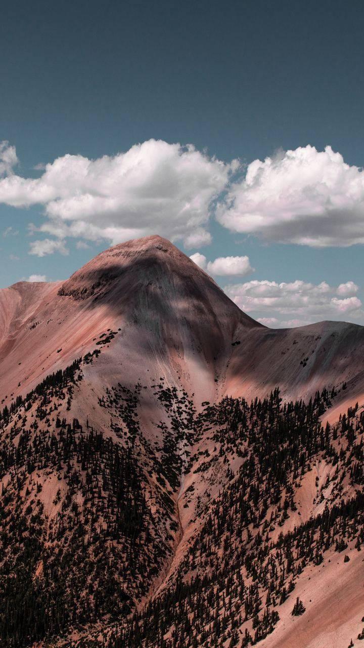 Mountain Alpine