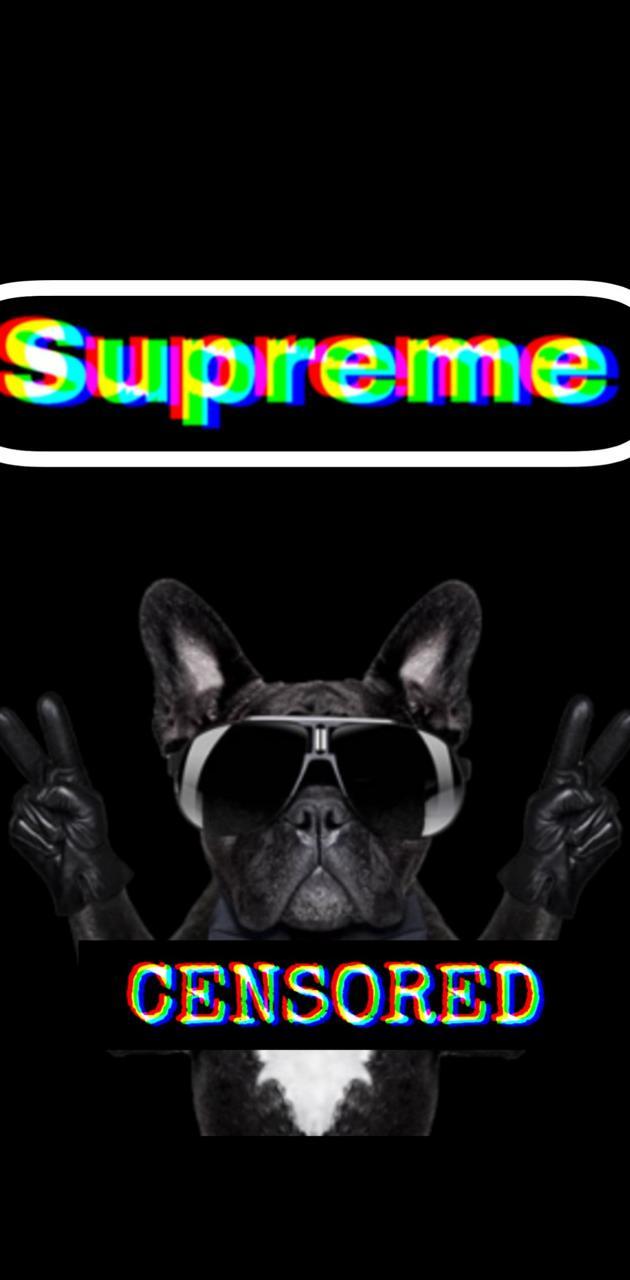 Supreme doggo