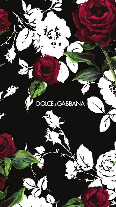 Dolce And Gabbana Wallpapers Free By Zedge
