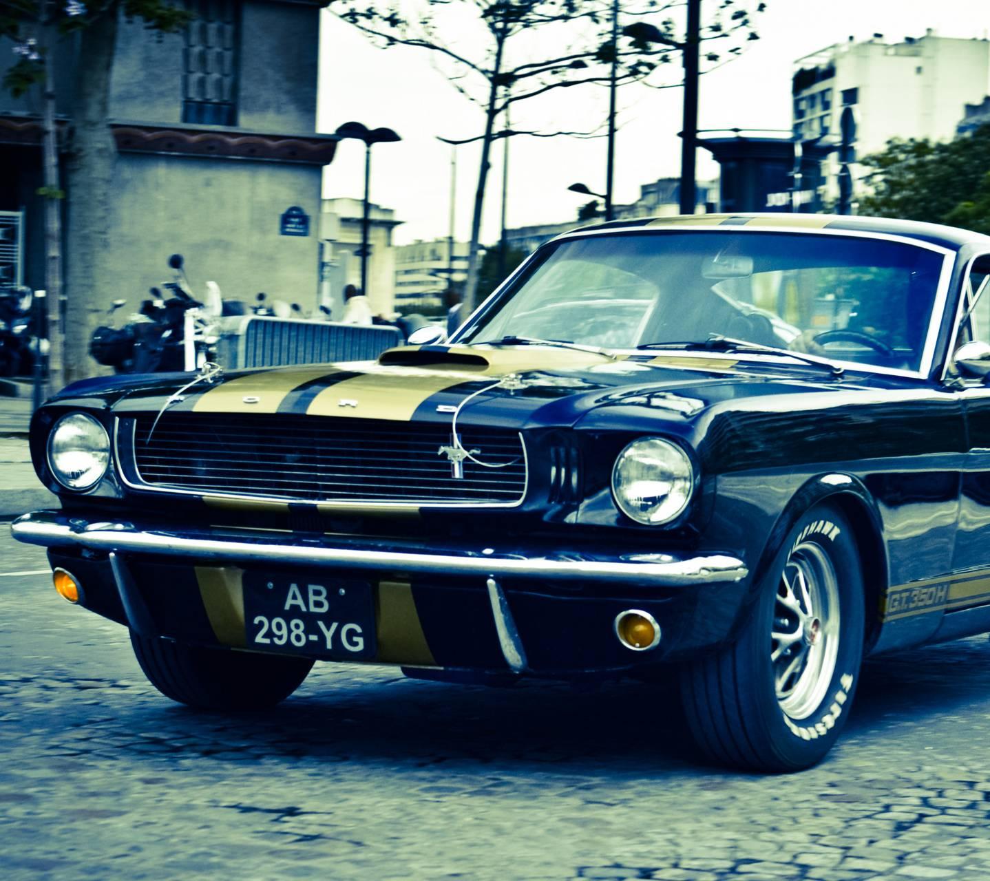 Black Sexy Mustang