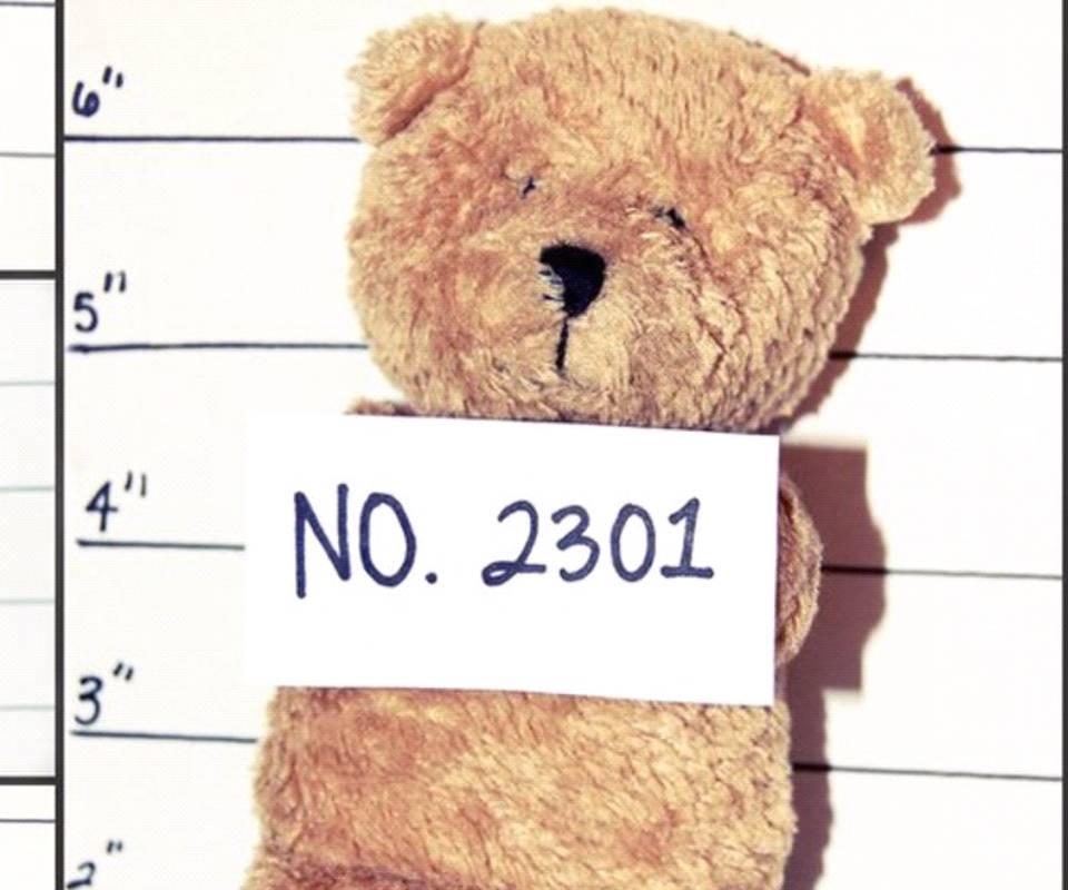 Teddy Criminal