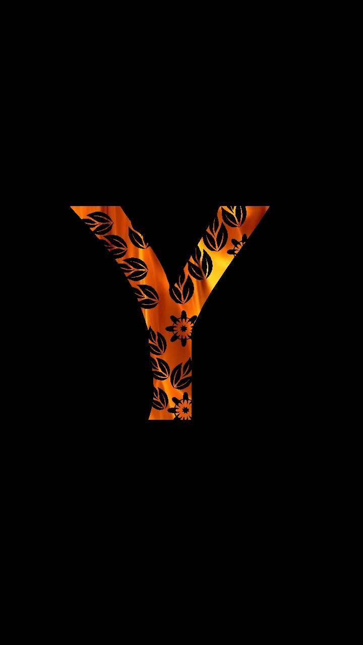 Y Letter