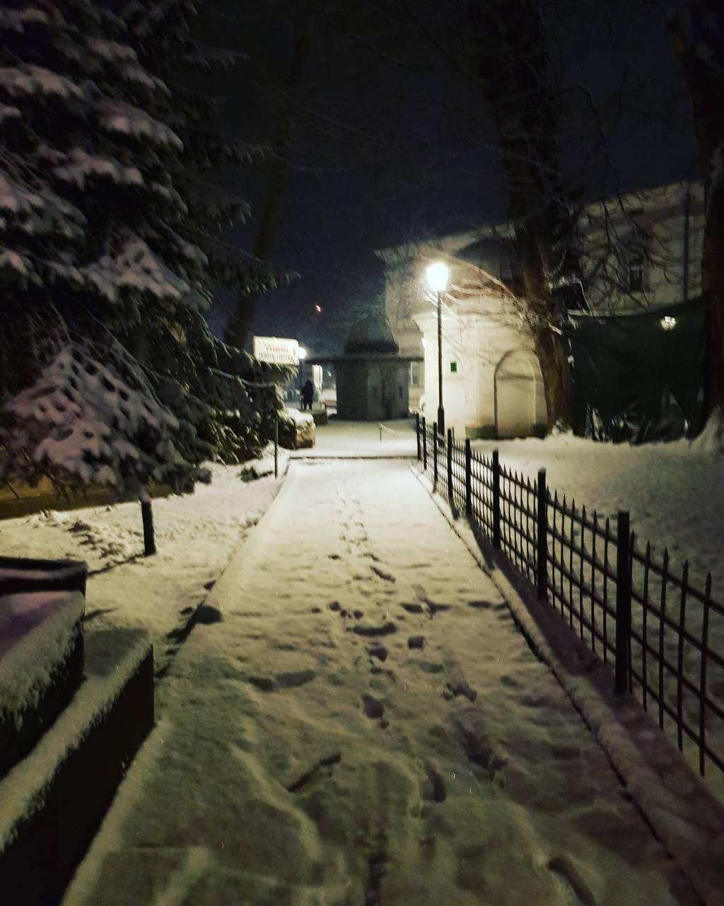 Snowy trail at night