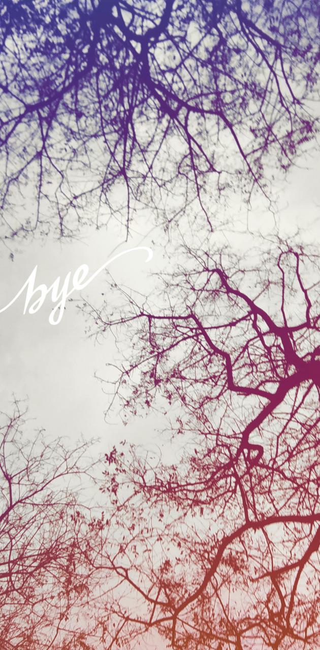 Bye winter