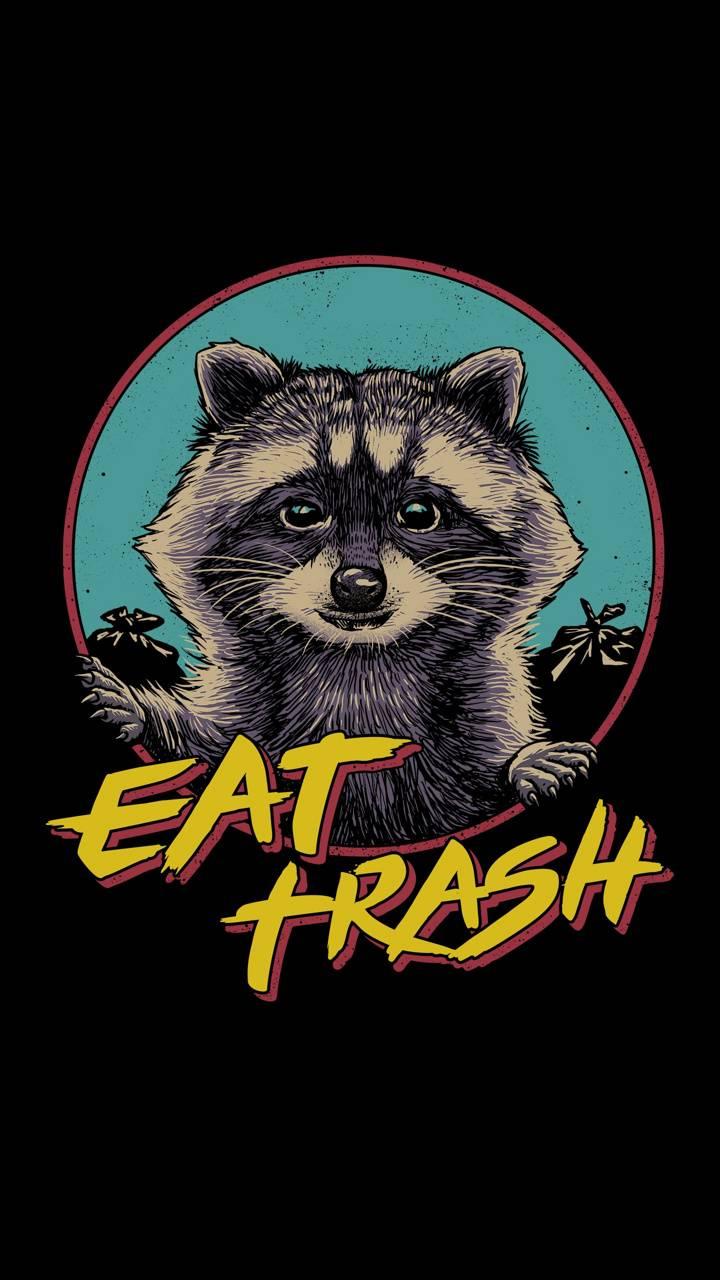 Black Racoon Trash