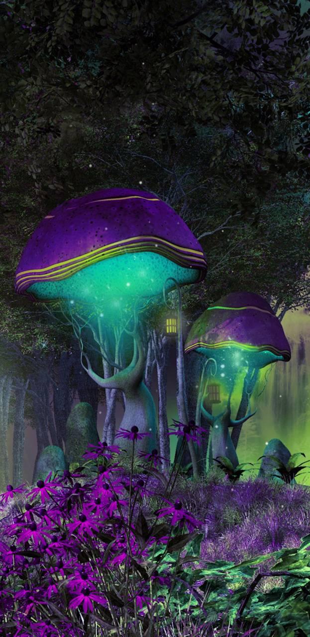 FairyForset