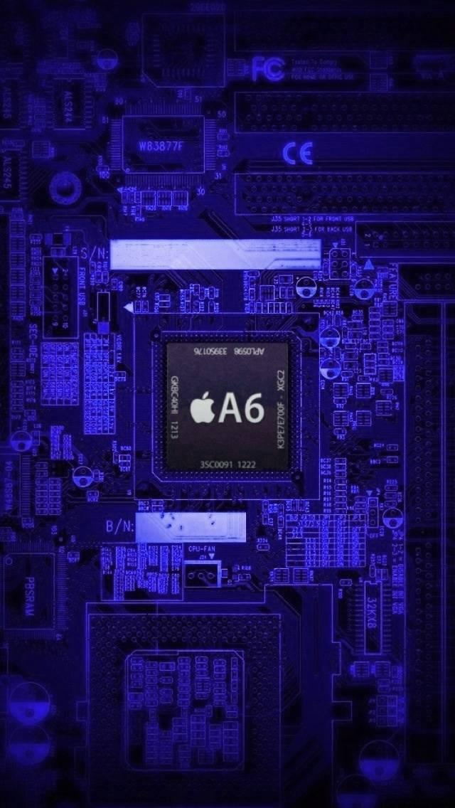 Violet Iphone 5 Xray