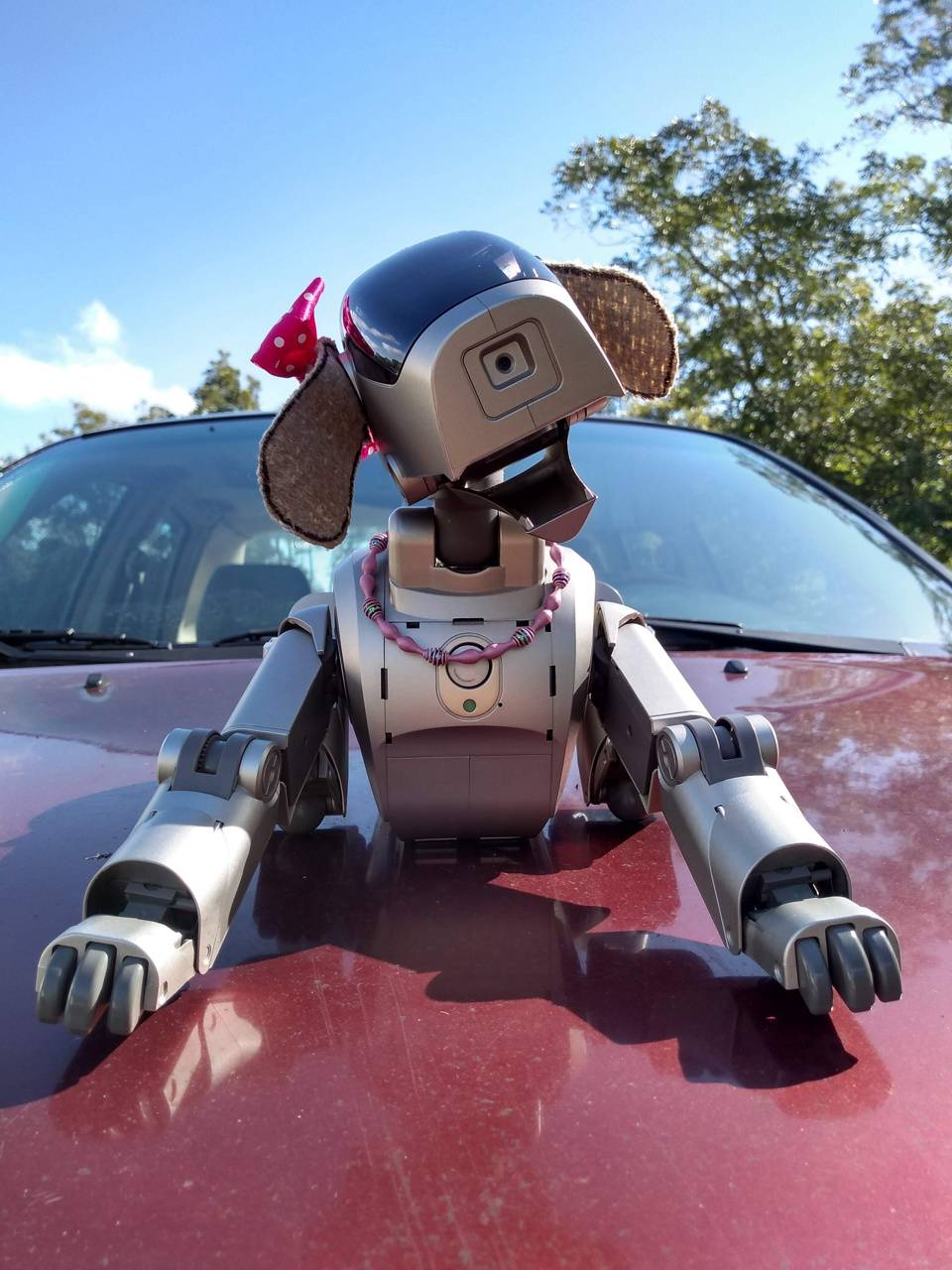 AIBO on Subaru