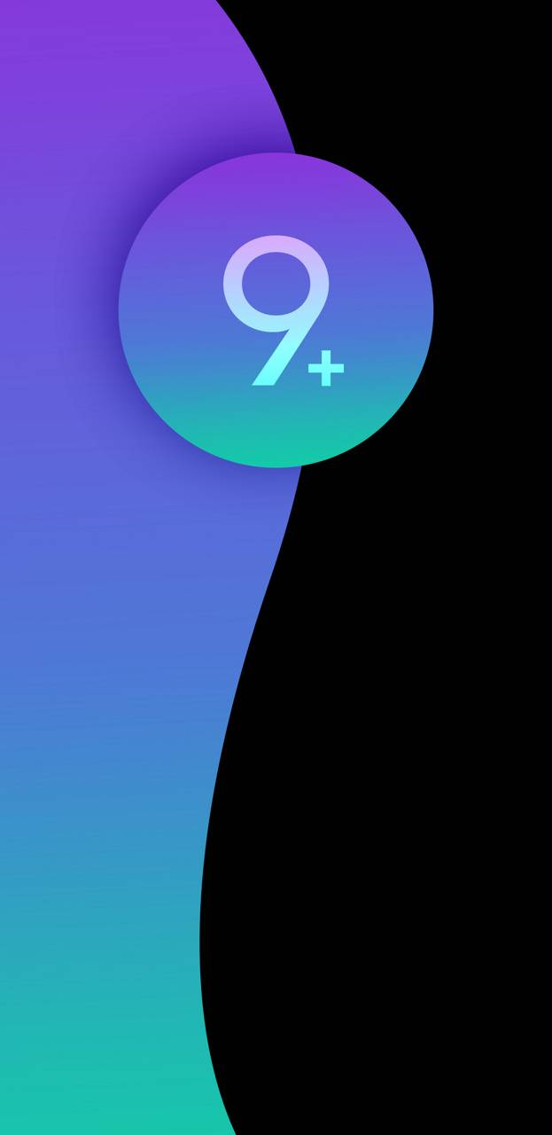 S9 plus