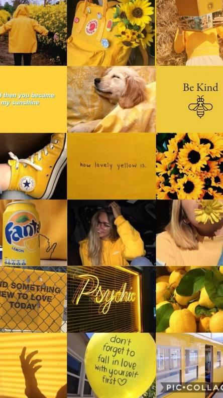 Yellow aesthetic 2
