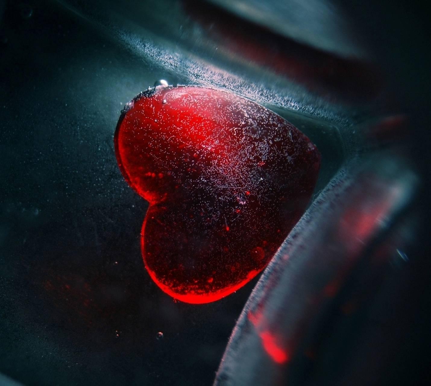 TOP 1 HEART