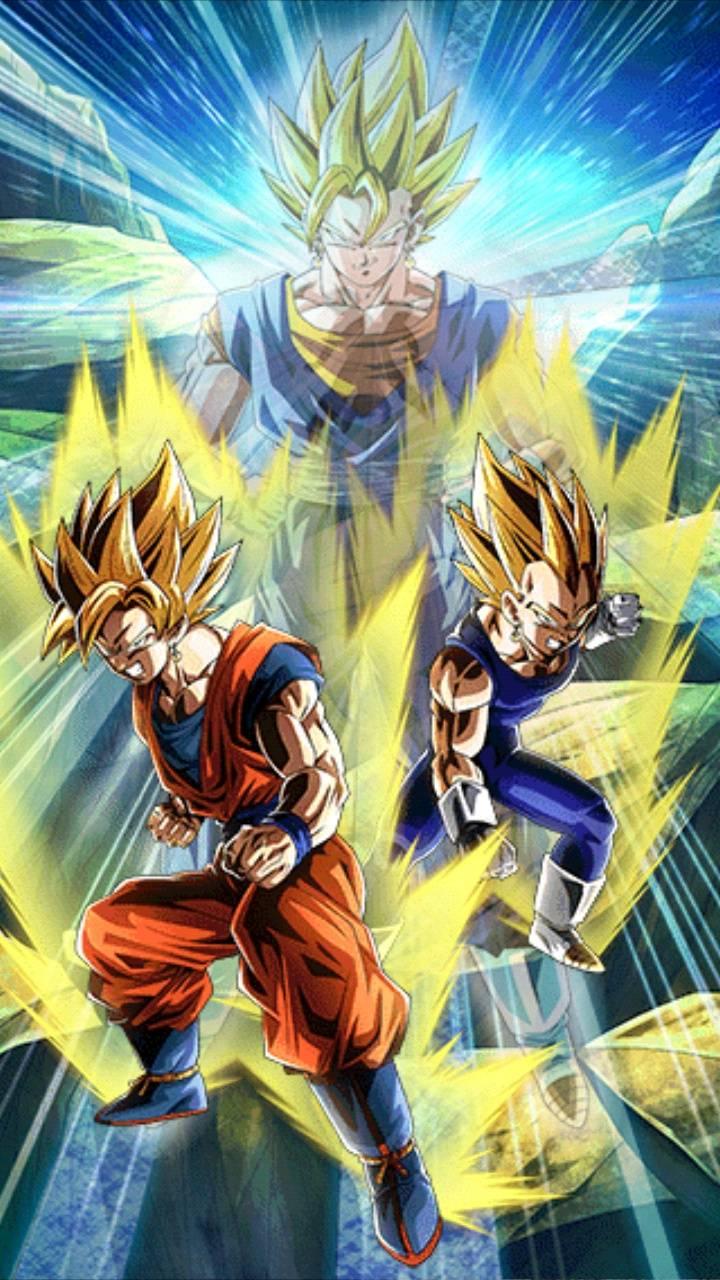 LR Goku and Vegeta